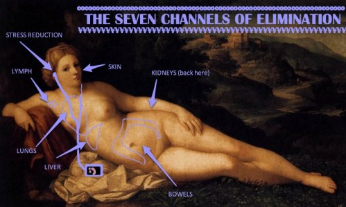The Seven Channels of Elimination